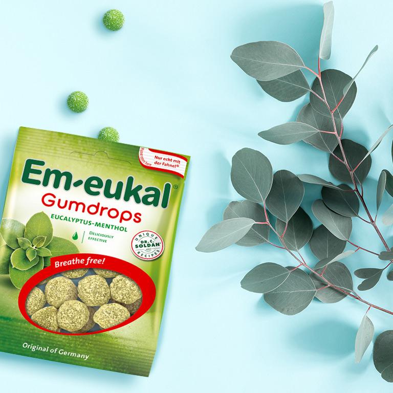 Koala-Moment with Em-eukal Gumdrops